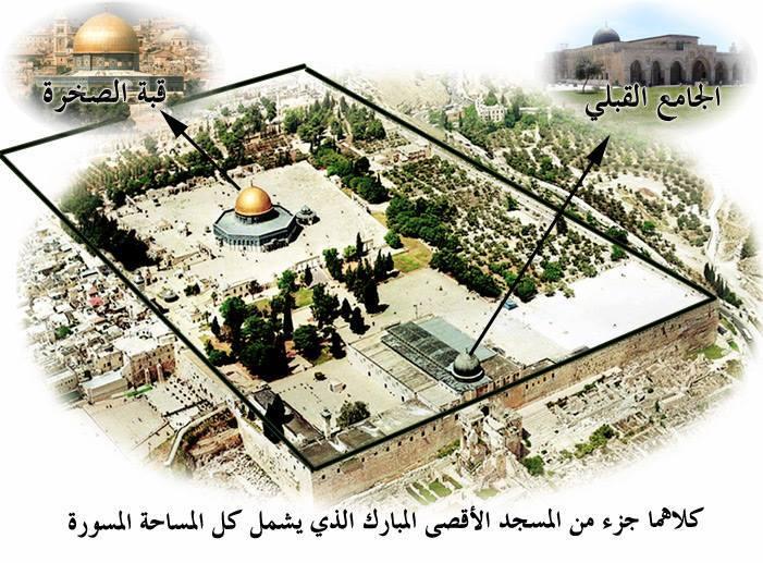 أردغان الدفاع القدس والأقصى واجب d982d8a8d8a9-d8a7d984d8b5d8aed8b1d8a9.jpg